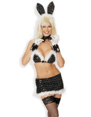 http://www.lingerie.co.uk/photos/LZoom_634765844330533900_Hollywood%20Bunny%20by%20Shirley%20of%20Hollywood.jpg